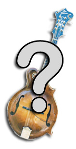 have a mandolin question?